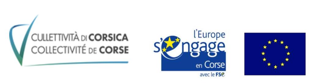 Preparation Au Concours D Entree Aide Soignant E Ifrts Corse